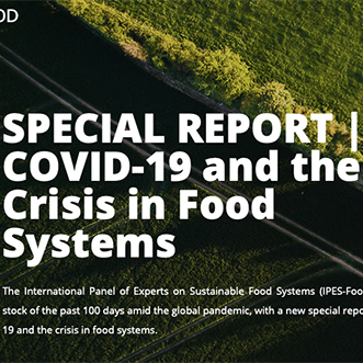 COVID-19 и кризис в продовольственных системах: уроки, выводы и необходимые меры